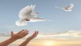 آزادی ۹ مددجوی غیر عمد در ششمین جلسه ستاد دیه/ ۷۶ زندانی جرائم مالی غیرعمد چشم انتظار کمک خیرین