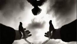 رهایی محکوم به قصاص نفس پس از ۶ سال در شهرستان دلفان لرستان