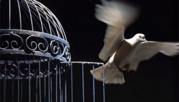 آزادی ۱۱۱ زندانی با بیش از ۱۱ میلیارد بدهی در ماه مبارک رمضان